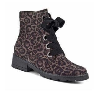 ARA 63103 Grey Leopard