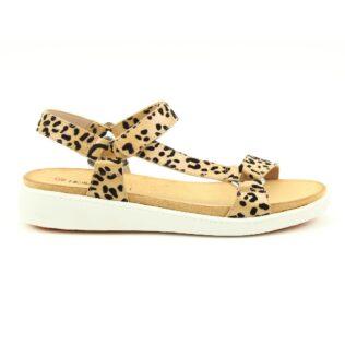 Heavenly Feet Delta Leopard